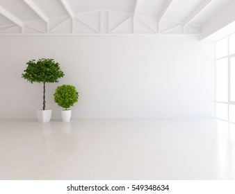 white empty room with a plant. Living room interior. Scandinavian interior design. 3d illustration