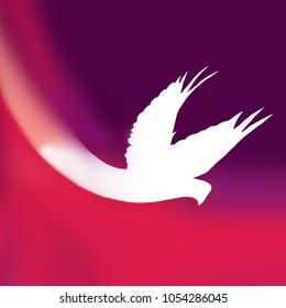 White Holy Spirit Pentecost Dove on Purple Background