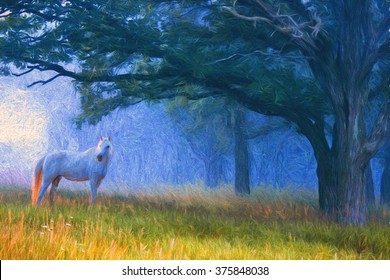 White horse in a beautiful foggy blue forest