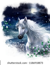 White horse in the night against the night sky and moon. Digital painting.