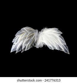 White neon angel wings