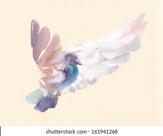 White pigeon watercolor