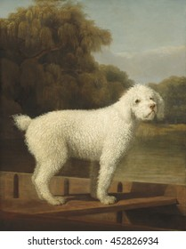White Poodle in a Punt, by George Stubbs, 1780, British painting, oil on canvas. Self-taught painter Stubbs, was best known for his animals engravings and paintings