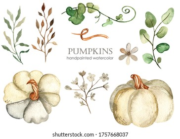 White pumpkins, leaves and flowers. Watercolor hand drawn clipart