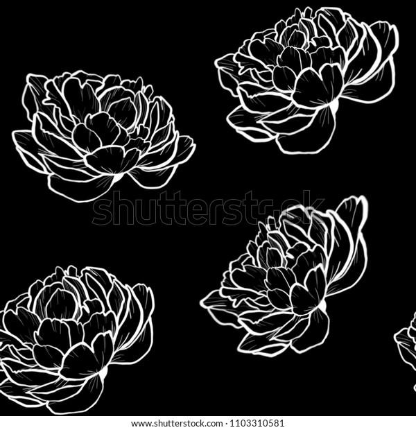 White Seamless peony line work pattern wallpaper on black background