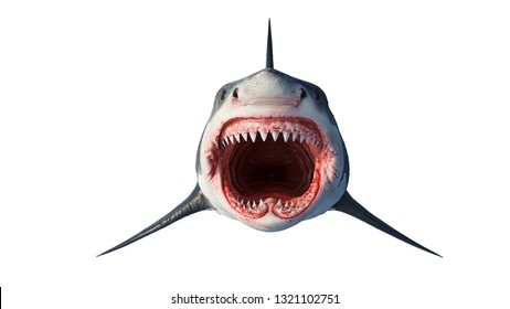 White shark marine big predator, front view. 3D rendering