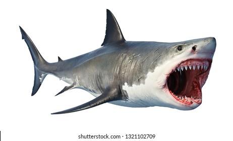 White shark marine predator big open mouth. 3D rendering