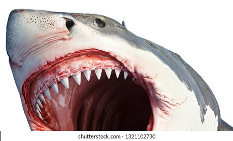 White shark marine predator big fish, close view. 3D rendering
