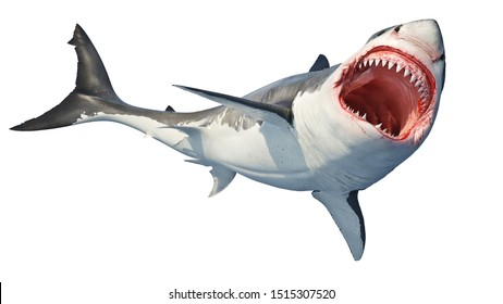 White shark marine predator big open mouth. Isolated background. 3D rendering