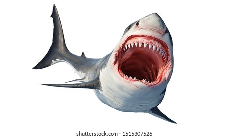 White shark marine predator big open mouth and teeth. 3D rendering