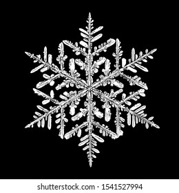 White snowflake isolated on black background. Illustration based on macro photo of real snow crystal: large stellar dendrite with fine hexagonal symmetry, complex ornate shape and six elegant arms.