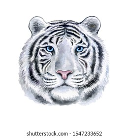 White tiger portrait with blue eyes isolated on white background. Watercolor. Illustration. Template. Hand drawing. Hand painting. Clip art. Close-up.