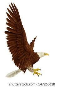wide eagle