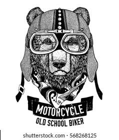 Wild BEAR for motorcycle, biker t-shirt Hand drawn image