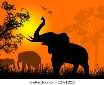 Wild elephants at sunset on beautiful landscape illustration