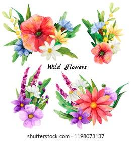 Wild flover bouquet  watercolor backraund