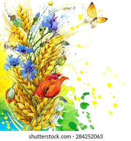 wild flower, wheat and butterfly. watercolor illustration