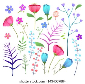Wild flowers flat illustration set. Summer flowers and twigs illustrations set. Abstract poppies, snowdrops, forget-me-nots blossoms isolated clipart. Meadow flora. Herbs and leaves botanical design