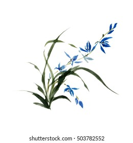 Wild orchid flower isolated on white background. Ink, watercolor, traditional oriental art, free brush.