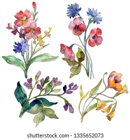 Wildflower bouquet floral botanical flowers. Wild spring leaf wildflower. Watercolor background illustration set. Watercolour drawing fashion aquarelle. Isolated wildflowers illustration element.