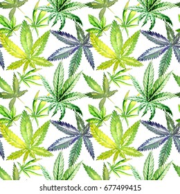 Wildflower cannabis flower pattern in a watercolor style. Full name of the plant:cannabis. Aquarelle wild flower for background, texture, wrapper pattern, frame or border.