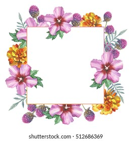 Wildflower hibiscus flower frame in a watercolor style isolated. Full name of the plant: marigold, hibiscus. Aquarelle wild flower for background, texture, wrapper pattern, frame or border.