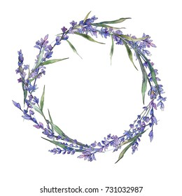 Wildflower lavander flower wreath in a watercolor style. Full name of the plant: lavander. Aquarelle wild flower for background, texture, wrapper pattern, frame or border.