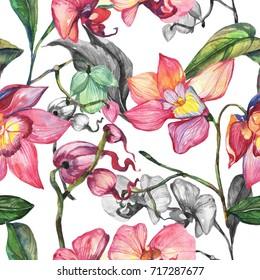 Wildflower orchid flower pattern in a watercolor style. Full name of the plant: orchid flower. Aquarelle wild flower for background, texture, wrapper pattern, frame or border.