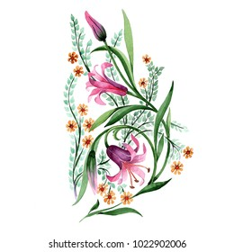 Wildflower ornament flower in a watercolor style isolated. Full name of the plant: lily. Aquarelle wild flower for background, texture, wrapper pattern, frame or border.