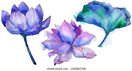 Lotus Flower Watercolour Images Stock Photos Vectors Shutterstock