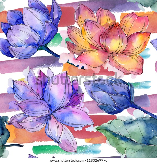 Wildflower Watercolor Colorful Lotus Flower Floral Stock