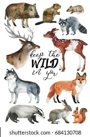 Wildlife Hand-drawn postcard Cute Watercolor illustration of animals. Watercolour graphic for fabric, postcard, greeting card, book. Deer, deer, hare, mouse, squirrel, wolf, fox, boar.