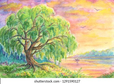 Willow tree near water at sunset or sunrise - landscape painting with gouache in watercolor technique.