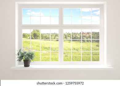 Window with summer landscape and green flower . 3D illustration