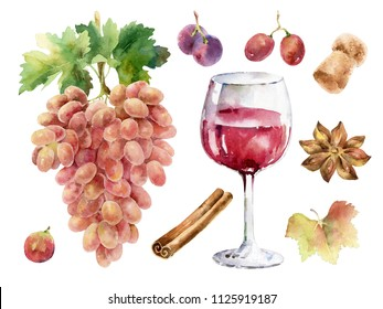 Wine set. Hand-drawn painted watercolor illustration with bunch of grapes, glass of wine, spices,  and other elements. For the design of menu and other projects