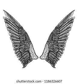 Wings pair set. Hand drawn detailed bird wings. Card, poster, t-shirt, smart phone, CD print design.