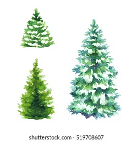 winter christmas trees set nature clip art fir illustration conifer landscape