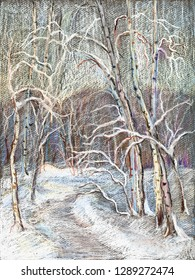 winter landscape with footpath in park