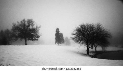 Winter landscape with leafless trees on lake shore. 3D rendering
