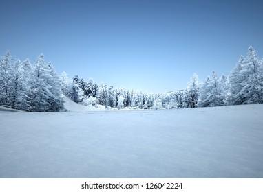 winter landscape, tranquil pine forest, 3d render dey