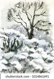 Winter Park, snowy landscape, watercolor painting