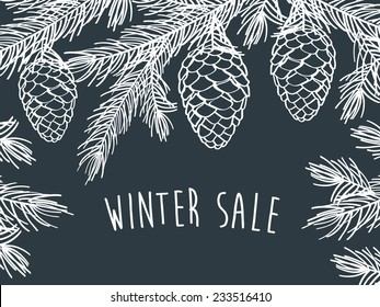 Winter sale. Winter background with pine branches with cones. Hand drawing with chalk on a blackboard.