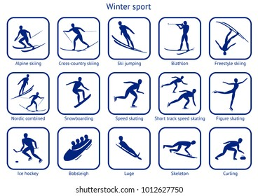 Winter sport and game. Set of 15 icon with a description. Pictograms for  fifteen sport disciplines of winter competitions. Raster version.