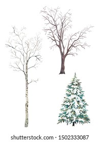 Winter trees set. Watercolor silhouettes of snow covered Christmas tree, birch and elm.