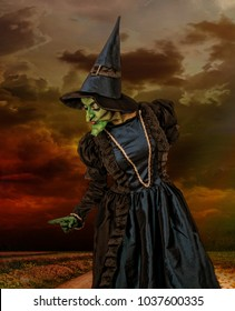 THE WIZARD OF OZ WITCH