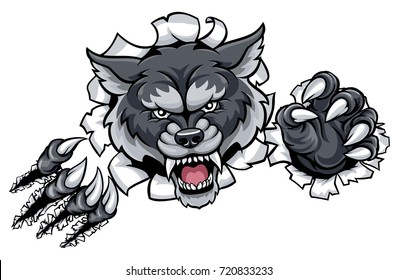 A wolf angry animal sports mascot and breaking through the background with its claws