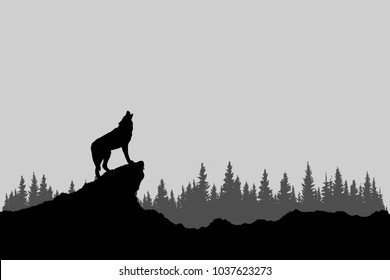 Wolf howling in forest, black and white