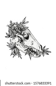 Wolf skull with few leaves