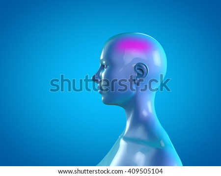Woman Anatomy Neck Pain Muscle Head Stock Illustration 409505104