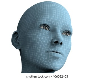 woman face in wireframe lines isolated on white ,3D illustration
